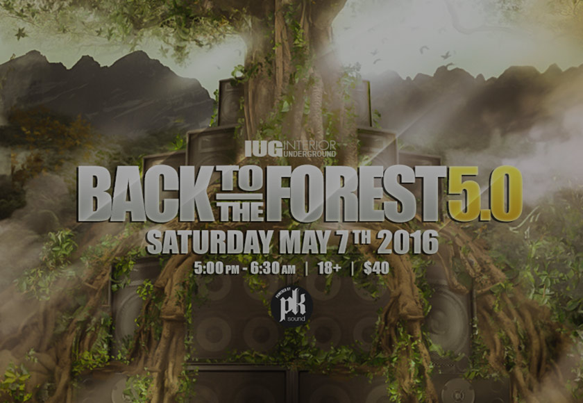 Back to the Forest 5.0