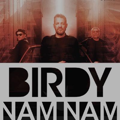 Birdy Nam Nam