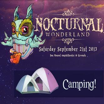 Nocturnal Wonderland Camping: Main Image
