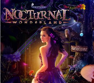 Nocturnal Wonderland: Main Image