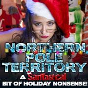 Northern Pole Territory: Santastical: Main Image