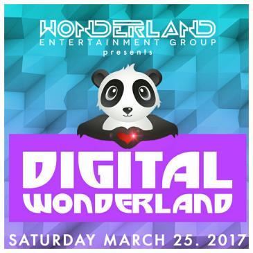Digital Wonderland: Main Image