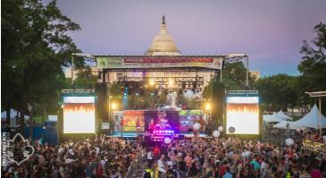 VIP Festival Experience: Main Image