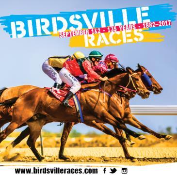 Birdsville Races 2017: Main Image