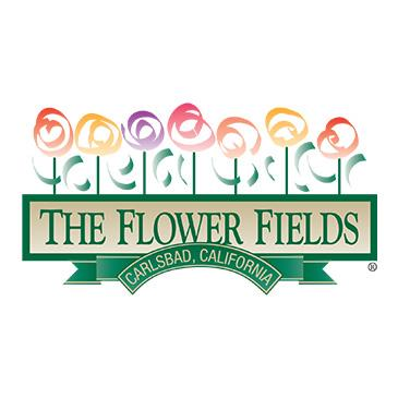 The Flower Fields 2018: Main Image