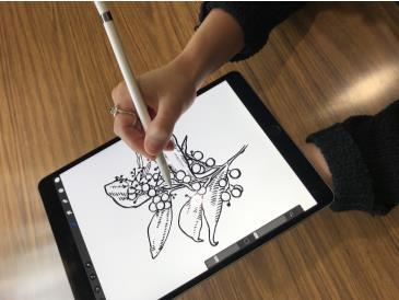 IPad Pro Digital Drawing Workshop: Main Image