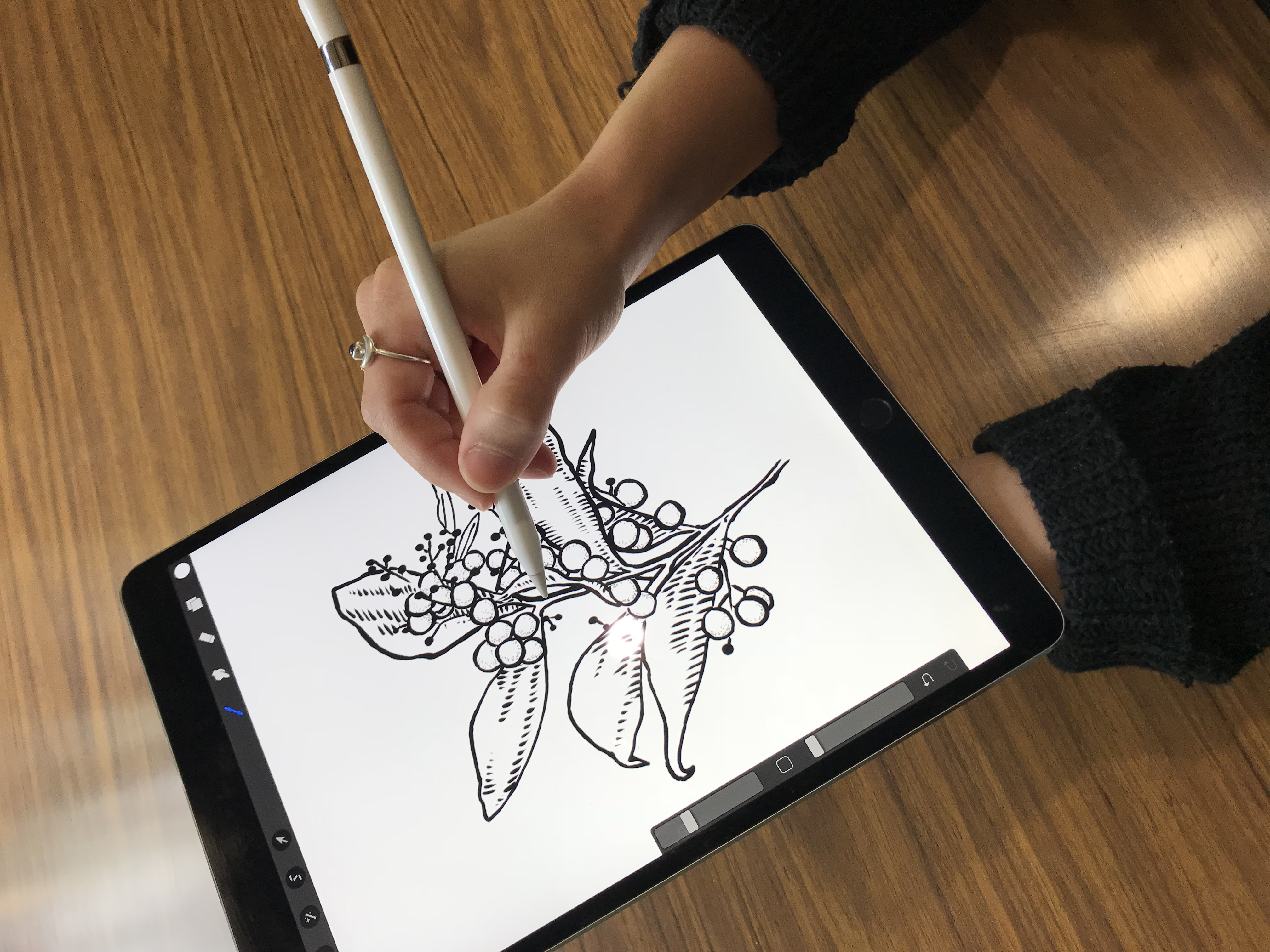 IPad Pro Digital Drawing Workshop Tickets - The Adelaide College Of The Arts On January 15 2018 ...