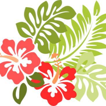 SS&A Senior Member Hawaiian Night-img