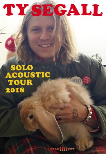 Ty Segall: Main Image