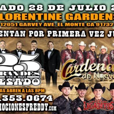 Cardinales De Nuevo Leon-img