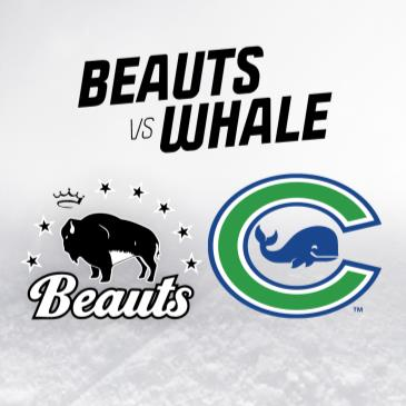 Beauts at Whale-img