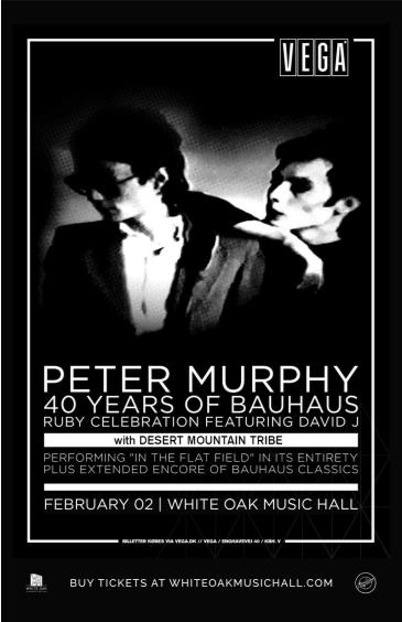 Peter Murphy 40 years of Bauhaus with David J: Main Image