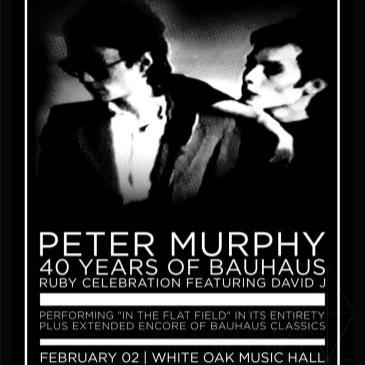 Peter Murphy 40 years of Bauhaus with David J-img