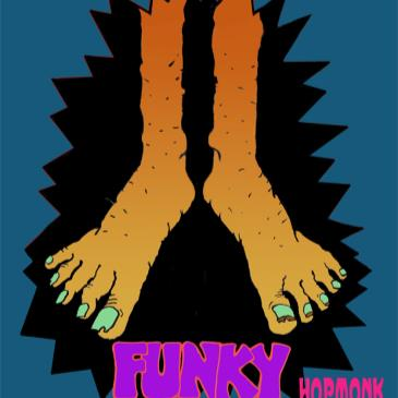 Funky Feat (Members of Little Feat)-img