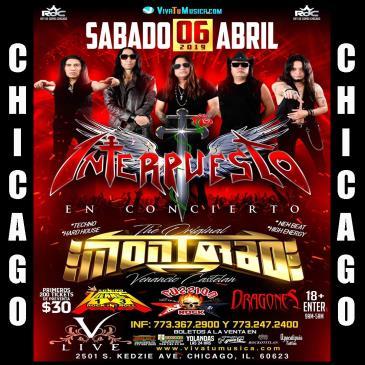 INTERPUESTO & MONTARBO EN CHICAGO: Main Image