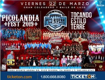 PICOLANDIA FEST 2019: Main Image