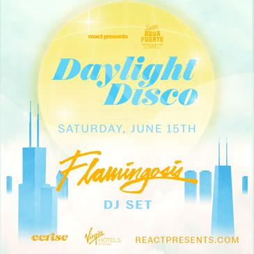 DAYLIGHT DISCO: Flamingosis: Main Image