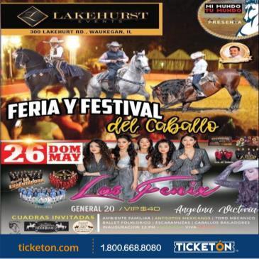 FERIA Y FESTIVAL DEL CABALLO: Main Image