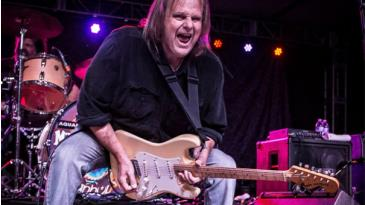Walter Trout: Main Image