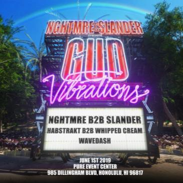 GUD VIBRATIONS HAWAII-img