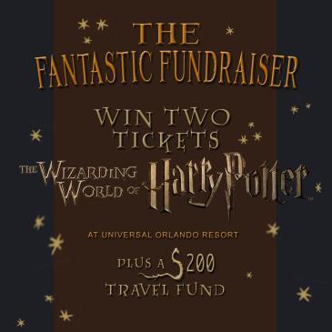 The Fantastic Fundraiser: Main Image