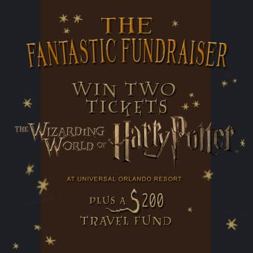 The Fantastic Fundraiser-img