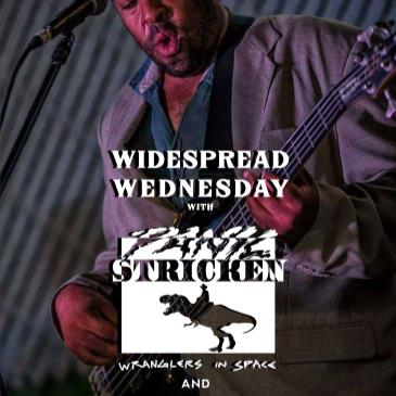 Widespread Wednesday with Panic Stricken and Flyjack-img