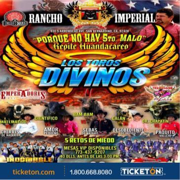 LOS TOROS DIVINOS: Main Image