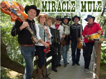 Miracle Mule (postponed): Main Image