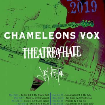Chameleons Vox-img