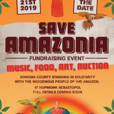 Save Amazonia-img