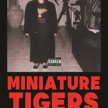 Miniature Tigers-img