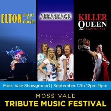 Moss Vale Music Tribute Festival: Main Image