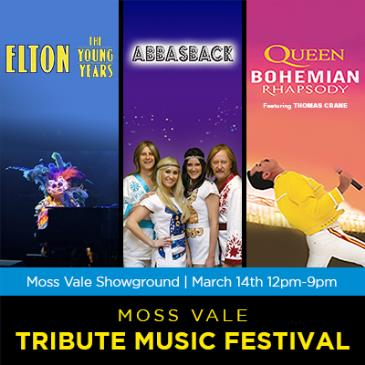 Moss Vale Music Tribute Festival: Main Image