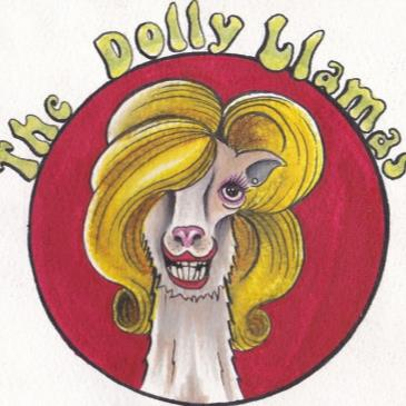 The Dolly Llamas Album Release-img