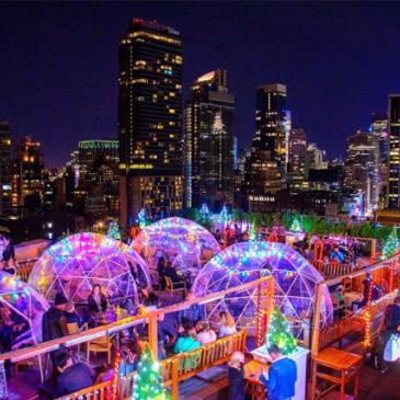 Winter Wonderland Penthouse Party at 230 Fifth Rooftop-img