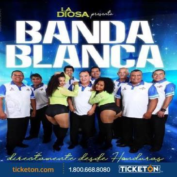 BANDA BLANCA