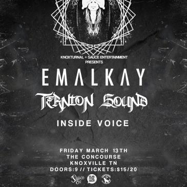 Emalkay and Ternion Sound: Main Image