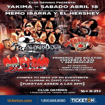 POSTPONED-ALACRANES MUSICAL, HOROSCOPOS DE DURANGO: Main Image