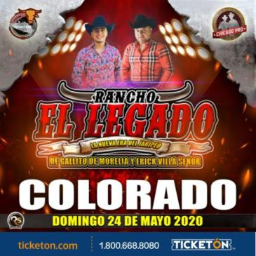 CANCELLED JARIPEO BAILE: Main Image