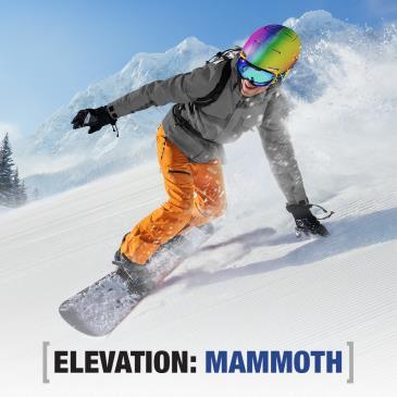 ELEVATION: MAMMOTH-img
