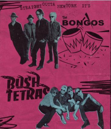 The Bongos / Bush Tetras - CANCELLED: Main Image