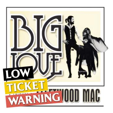 SOLD OUT: Big Love - Fleetwood Mac Tribute: Main Image