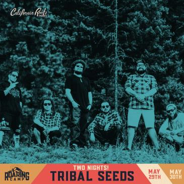 Tribal Seeds (Night 2) with Pacific Roots: Main Image