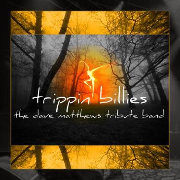 Dave Matthews Tribute - Trippin Billies: Main Image