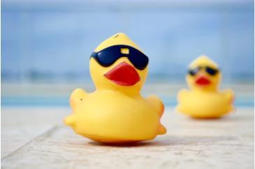 Beach Care Services Duck Races: Main Image