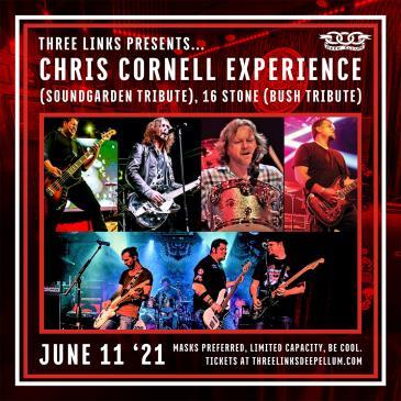 Chris Cornell Experience (Soundgarden), 16 Stone (Bush): Main Image