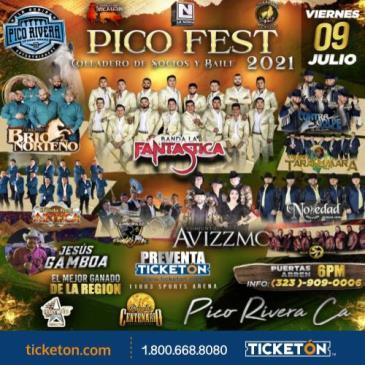 PICO FEST 2021: Main Image
