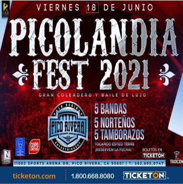 PICOLANDIA FEST 2021 COLEADERO BAILE: Main Image
