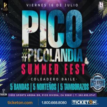 PICOLANDIA SUMMER FEST